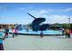 墾丁景點-海洋生物館