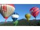 台東景點-熱氣球嘉年華